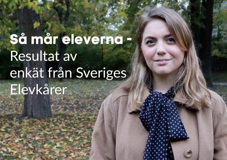 Ebba Kock, Så mår eleverna